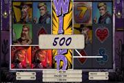 Wild Wild West Net Ent
